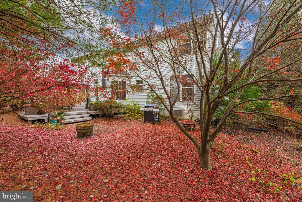 Mature landscaping throughout. - 6287 IVERSON TER S, FREDERICK