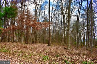 Land for Sale at Andreas, Pennsylvania 18211 United States