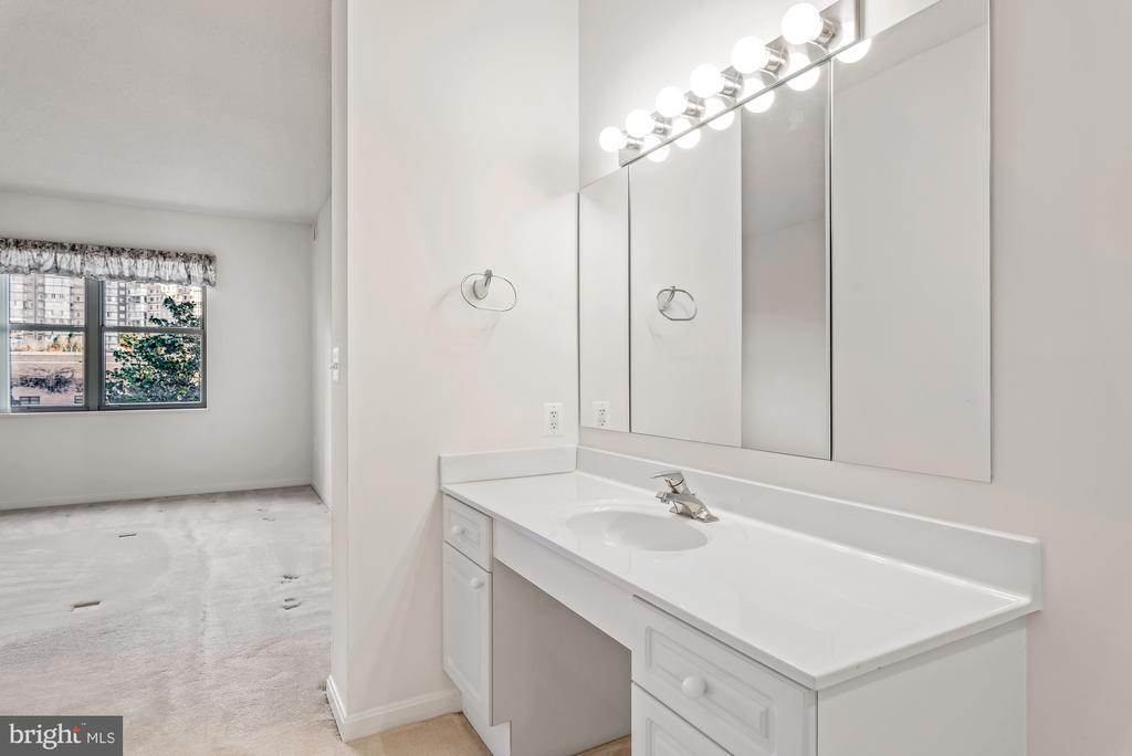 Extra vanity - 19370 MAGNOLIA GROVE SQ #208, LEESBURG