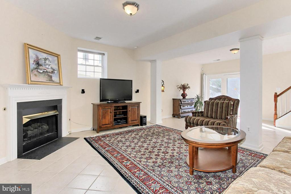LL Rec Room w/ fireplace and 9 ft ceilings! - 47525 SAULTY DR, STERLING