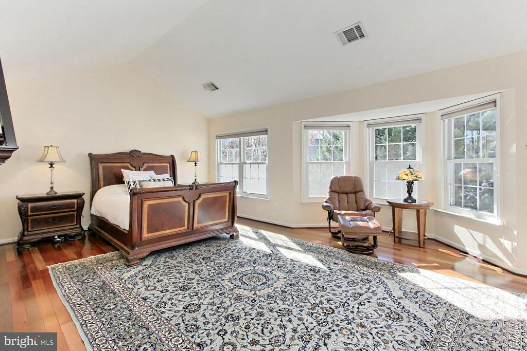 Gracious Owner's Suite with cathedral ceiling. - 47525 SAULTY DR, STERLING