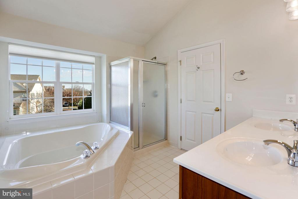 Master Bath w/ Soaking Tub & Separate Shower - 43224 SOMERSET HILLS TER, ASHBURN