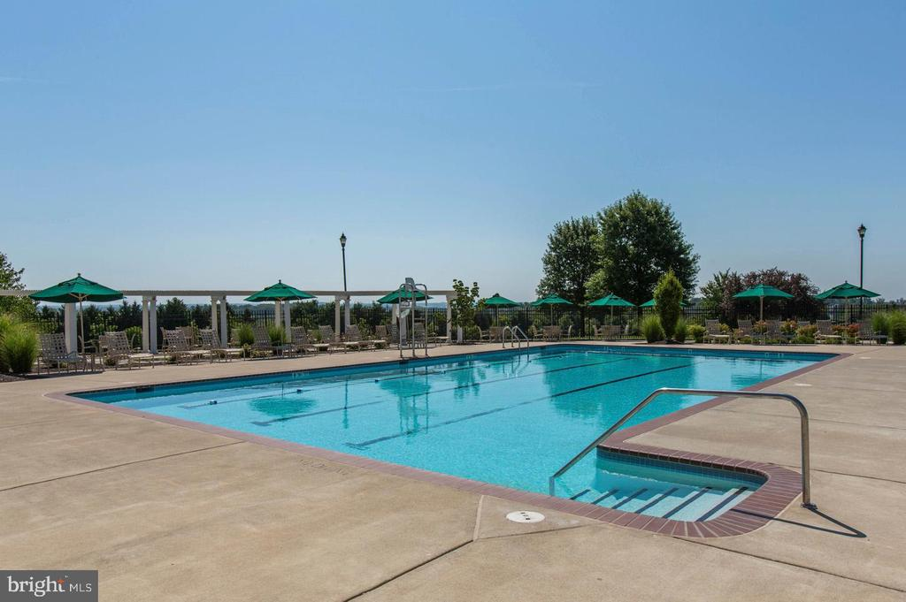 Adult Only Pool - 43224 SOMERSET HILLS TER, ASHBURN