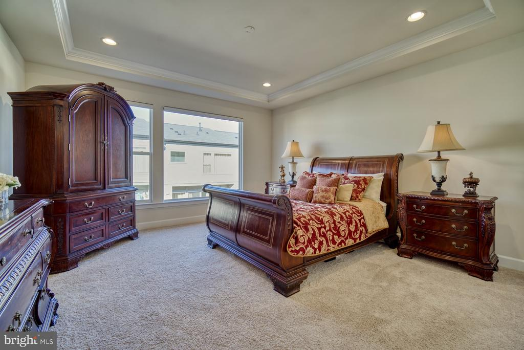 owners bedroom with tray ceilings - 42288 PORTER RIDGE TER, BRAMBLETON