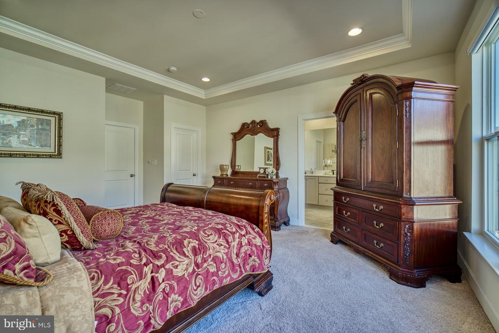 large owners bedroom - 42288 PORTER RIDGE TER, BRAMBLETON