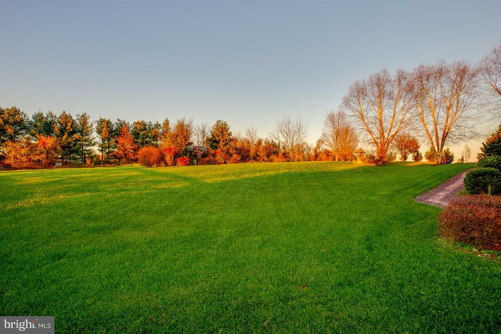 Large back yard opens to Common area - 40732 CHEVINGTON LN, LEESBURG