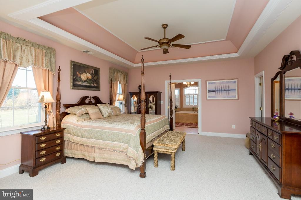 Master Bedroom with Tray Ceilings - 40732 CHEVINGTON LN, LEESBURG