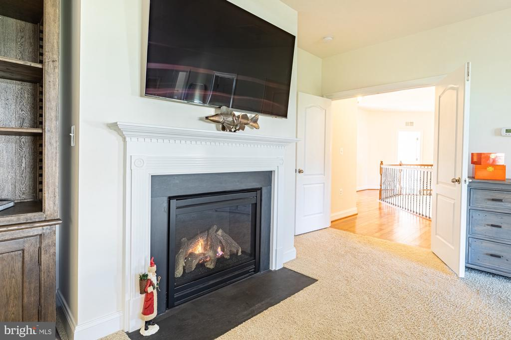 Gas fireplace for relaxing after a long day! - 41932 CLOVER VALLEY CT, ASHBURN