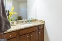Luxury owner's bath - 41932 CLOVER VALLEY CT, ASHBURN