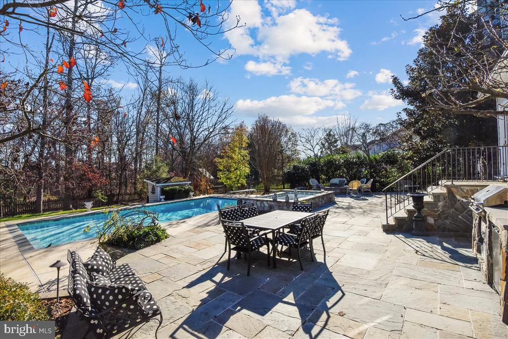 Large Patio - 25542 MIMOSA TREE CT, CHANTILLY