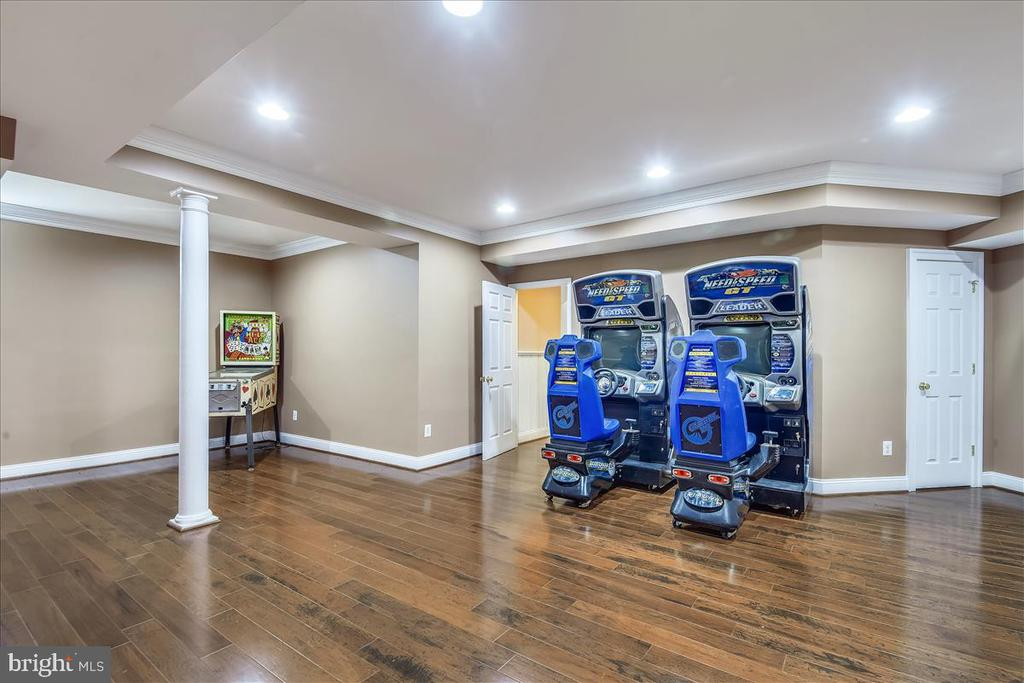 Lower Level Game Room - 25542 MIMOSA TREE CT, CHANTILLY