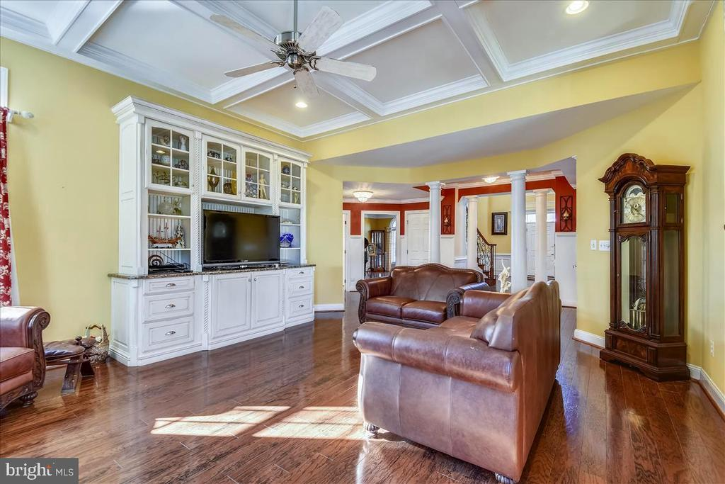 Family Room with Built In - 25542 MIMOSA TREE CT, CHANTILLY