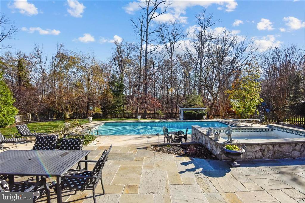 VIew - 25542 MIMOSA TREE CT, CHANTILLY