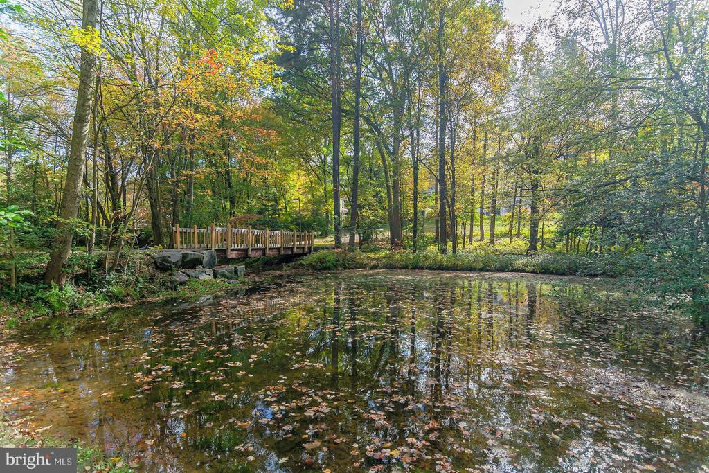 Hickory Cluster Pond and Bridge - 11503 MAPLE RIDGE RD, RESTON