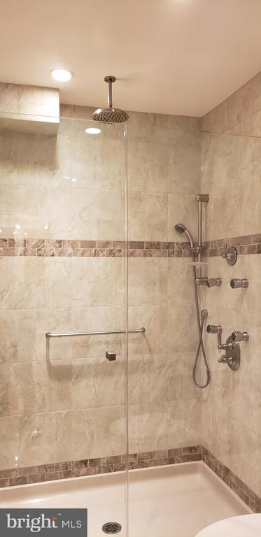 Waterfall, jets, hand-held shower system - 11503 MAPLE RIDGE RD, RESTON