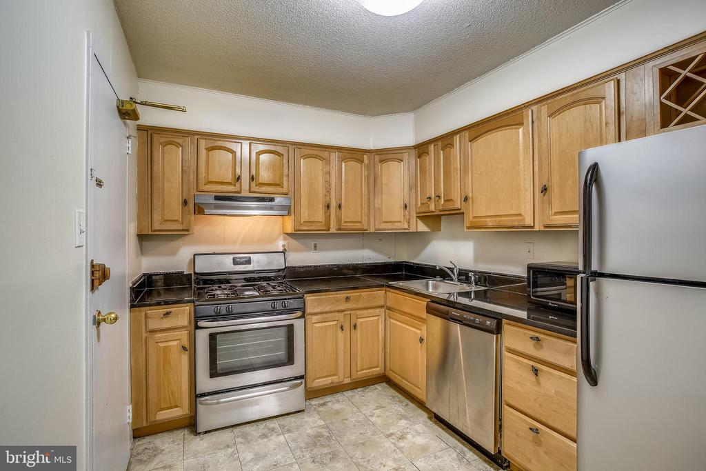 Kitchen (Gas Cooking) - 1300 ARMY NAVY DR #323, ARLINGTON