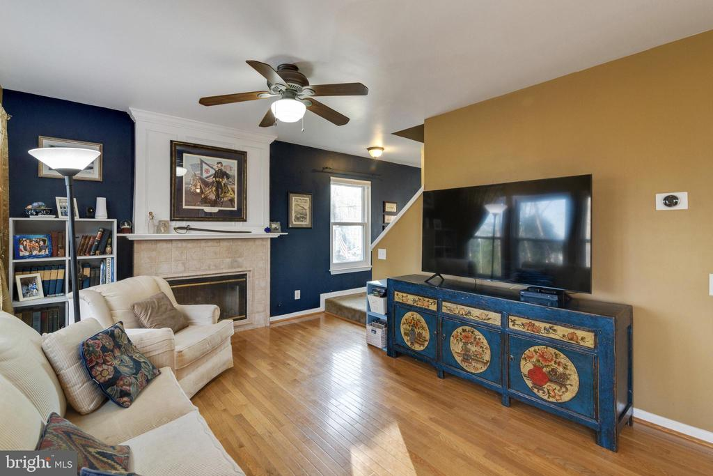 Family Room - 14859 BUTTONWOOD CT, WOODBRIDGE