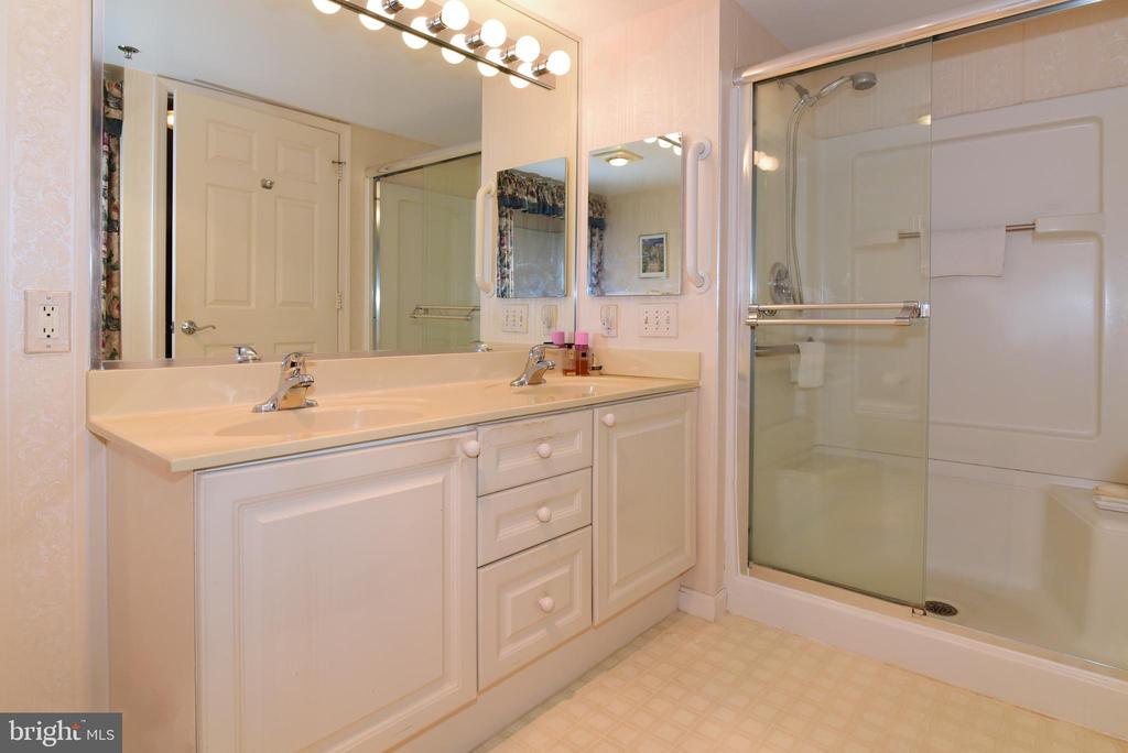 Master bath with tub and sep shower/double vanity - 19385 CYPRESS RIDGE TER #817, LEESBURG