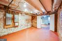 1113  Basement/Cellar - 1113 CAROLINE ST, FREDERICKSBURG