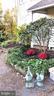Lilacs and kitchen porch - 4343 39TH ST NW, WASHINGTON