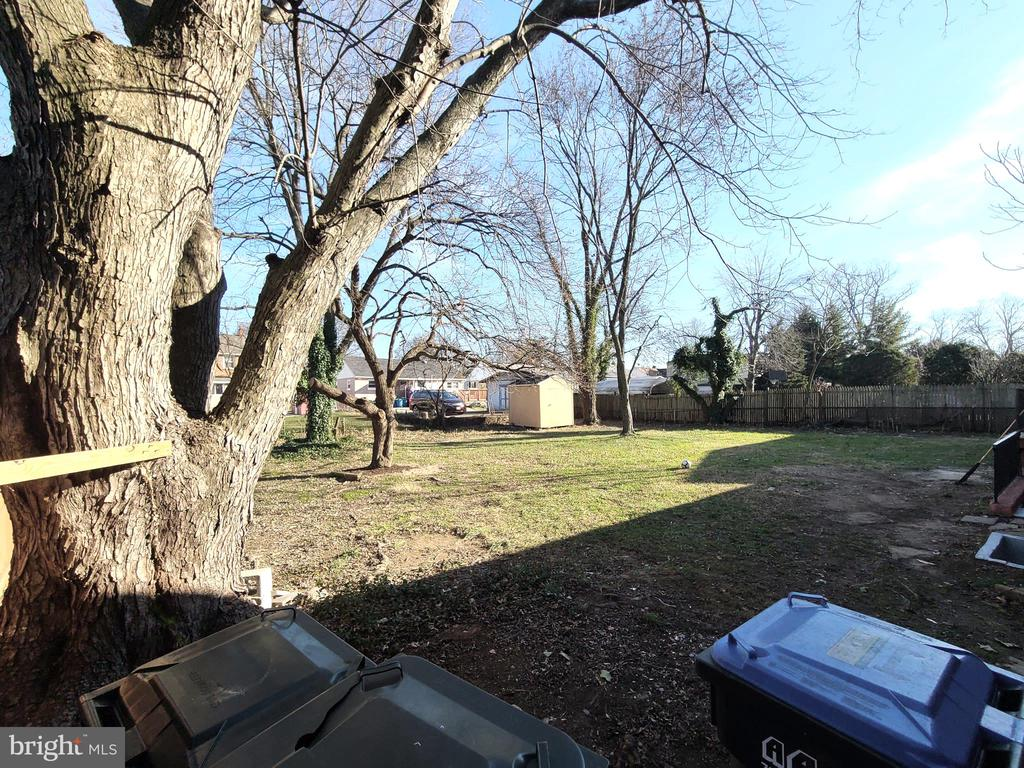 Huge back yard.! - 6021 AMHERST AVE, SPRINGFIELD