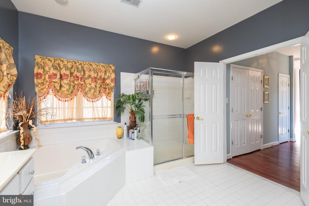 Master bath with soaking tub - 14215 PUNCH ST, SILVER SPRING