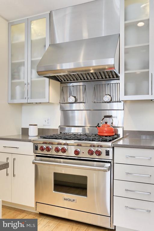 Stainless appliances - 1700 CLARENDON BLVD #158, ARLINGTON