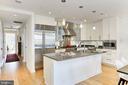 Gourmet kitchen - 1700 CLARENDON BLVD #158, ARLINGTON