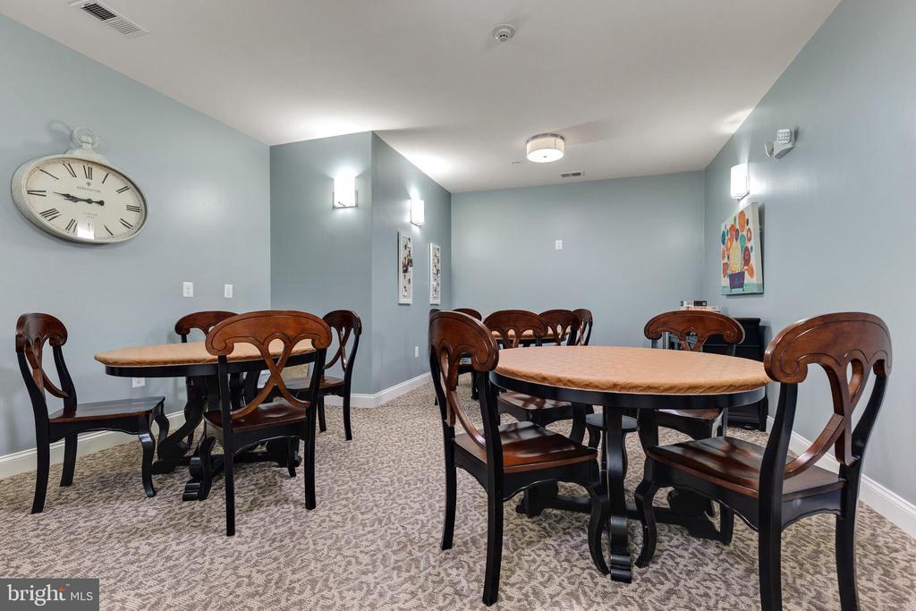 Common Room - 43144 SUNDERLAND TER #300, ASHBURN