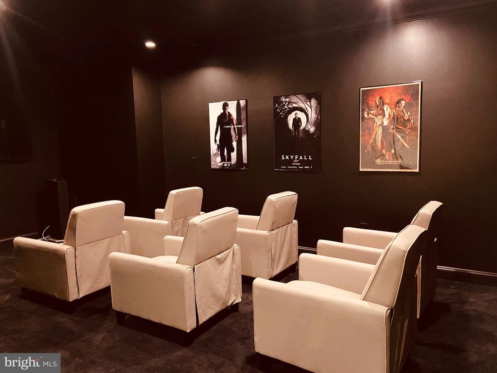 Lower level Media Room - 10713 ROSEHAVEN ST, FAIRFAX
