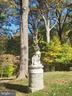 Statuary - 9610 DEWITT DR #PH101, SILVER SPRING
