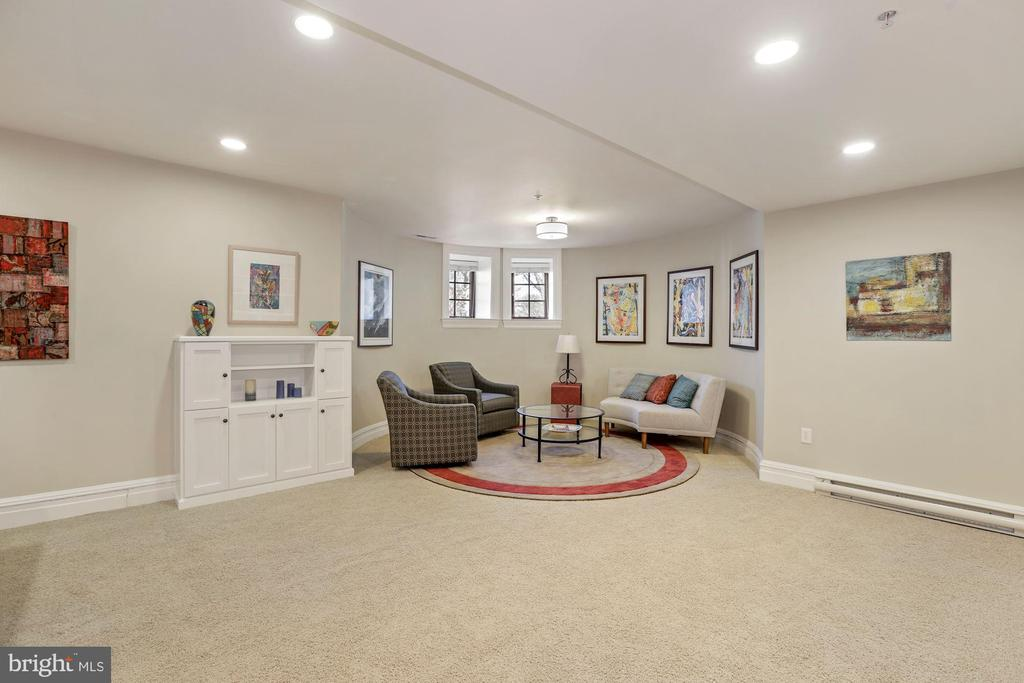 Lower Level Turret Living Room - 9610 DEWITT DR #PH101, SILVER SPRING