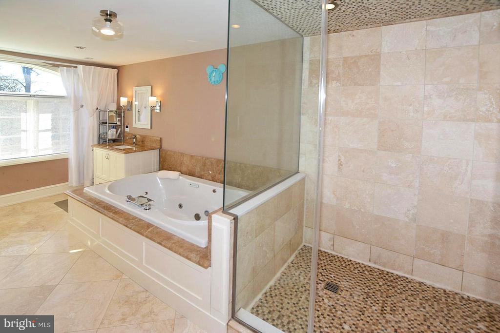 UPSCALE OWNER'S BATH - 2336 ADDISON ST, VIENNA