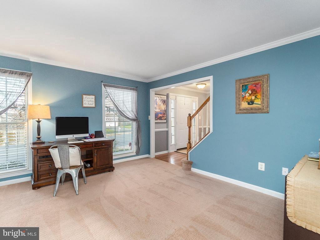 Living Room - 20 BRUSH EVERARD CT, STAFFORD