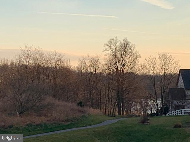 Lake view - 17652 TEDLER CIR, ROUND HILL