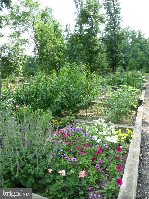 Gardening plots - 19350 MAGNOLIA GROVE SQ #407, LEESBURG