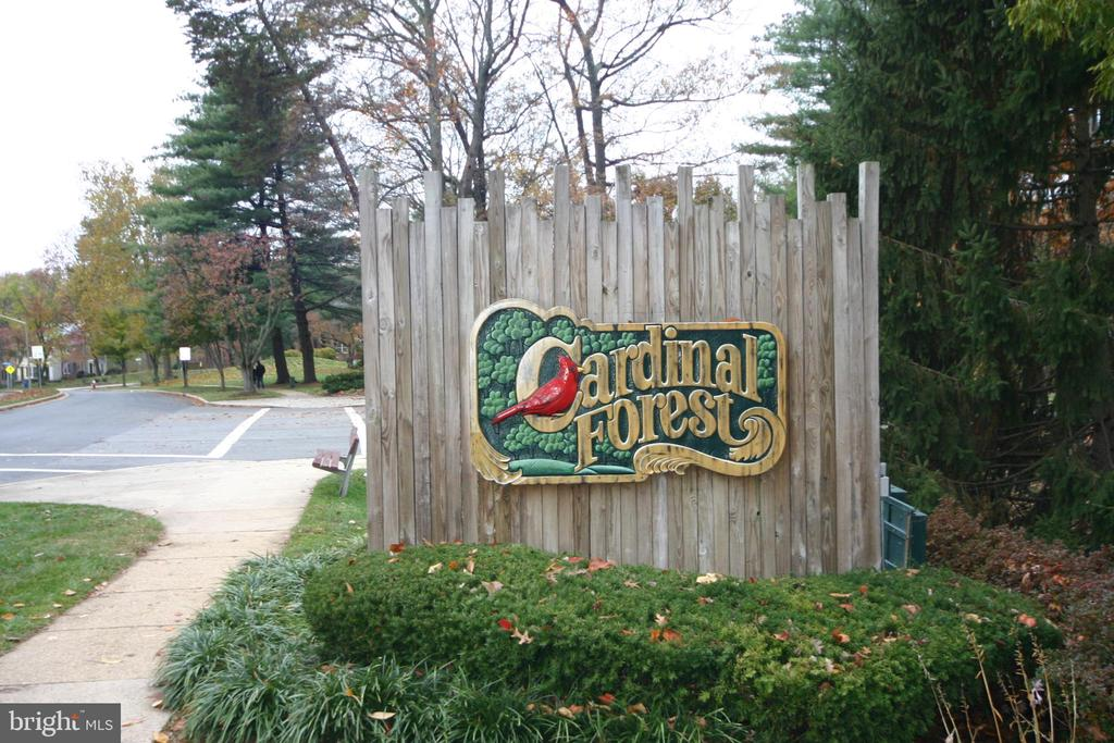 Sought After Cardinal Forest - 8110-E COLONY POINT RD #218, SPRINGFIELD