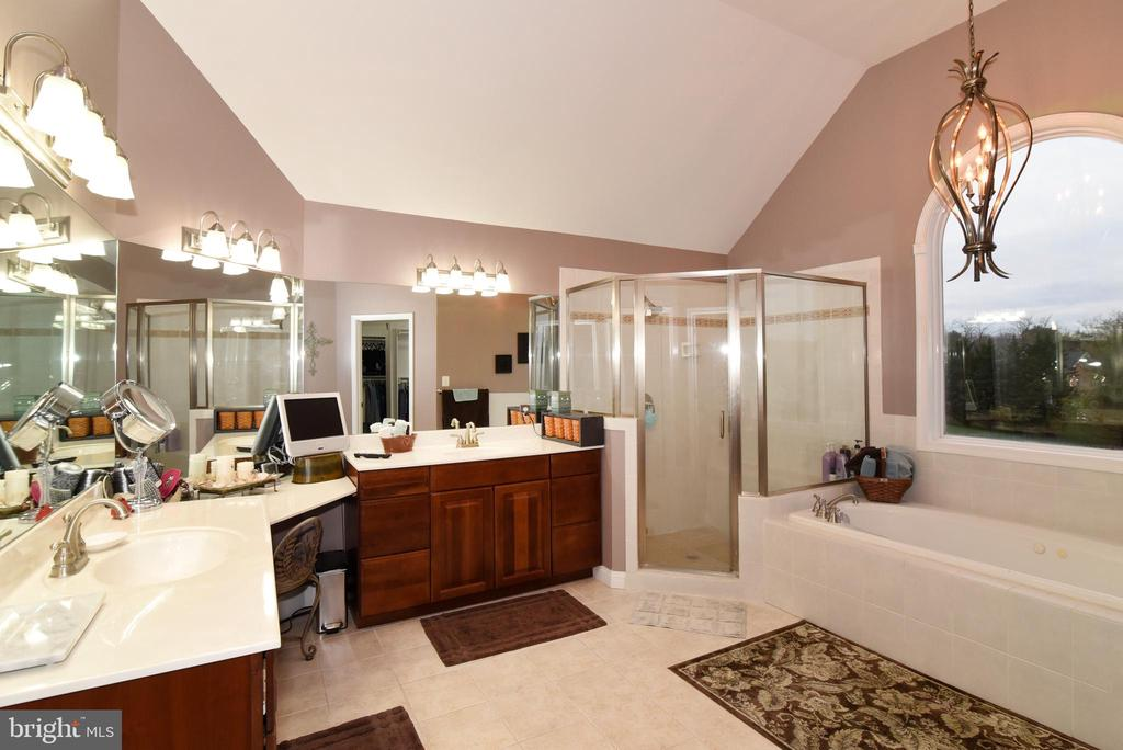 Primary bathroom - 42070 SADDLEBROOK PL, LEESBURG