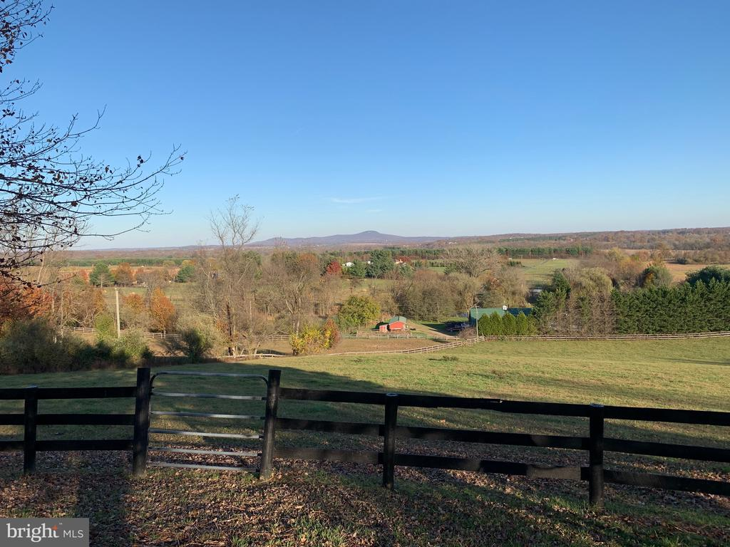 Pasture Views - 42130 CHERRY SPRING LN, LEESBURG