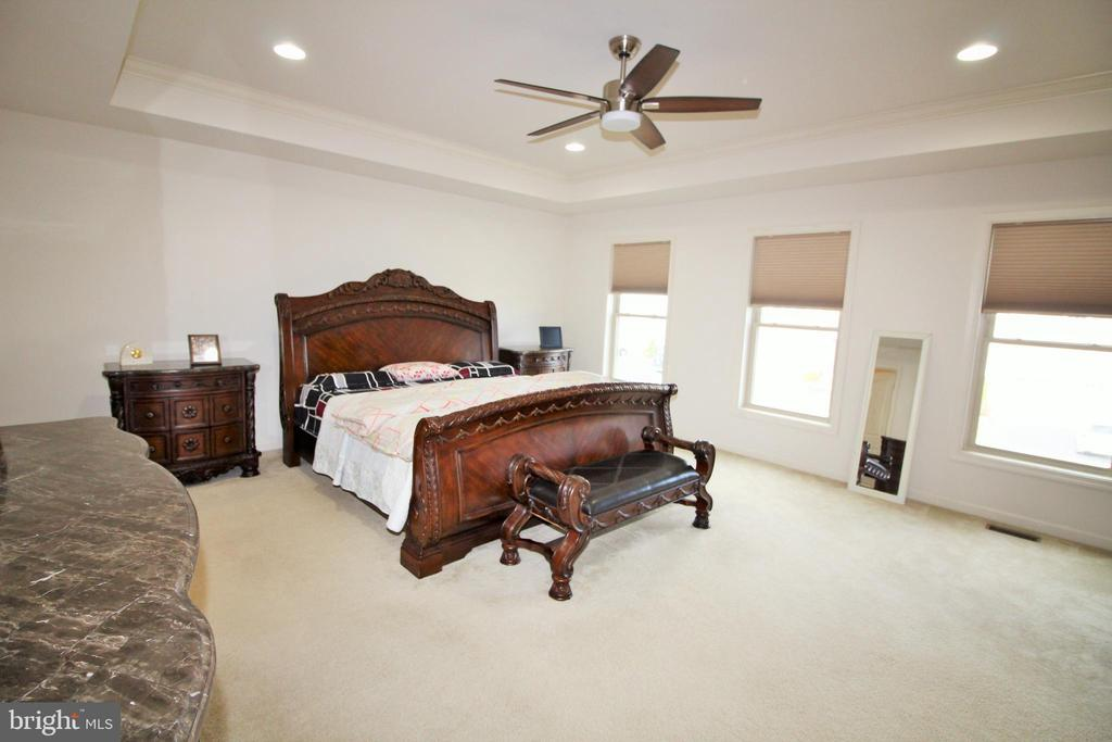 Primary Bedroom - 42567 STRATFORD LANDING DR, BRAMBLETON