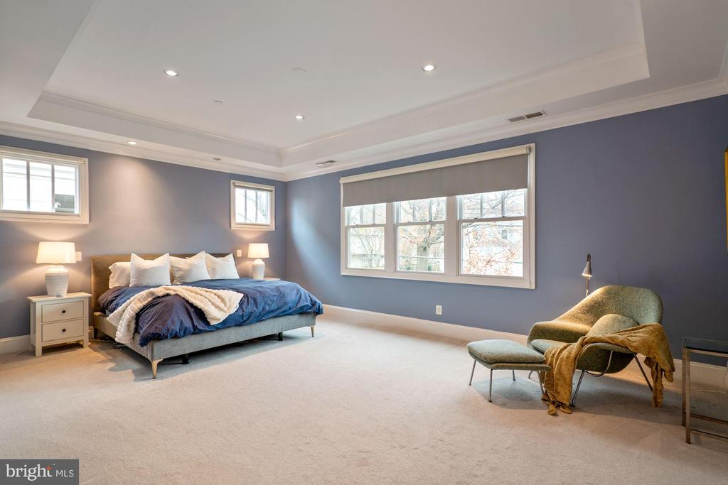 Spacious owner's suite with 3 walk in closets - 491 N WAKEFIELD ST, ARLINGTON