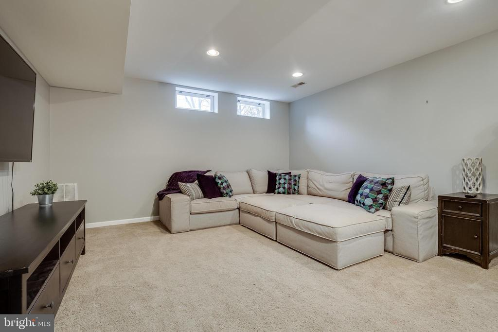 Lower Level Rec Room - 43216 LINDSAY MARIE DR, ASHBURN