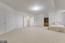Lower Level large full bedroom-Alt view - 41205 CANONGATE DR, LEESBURG