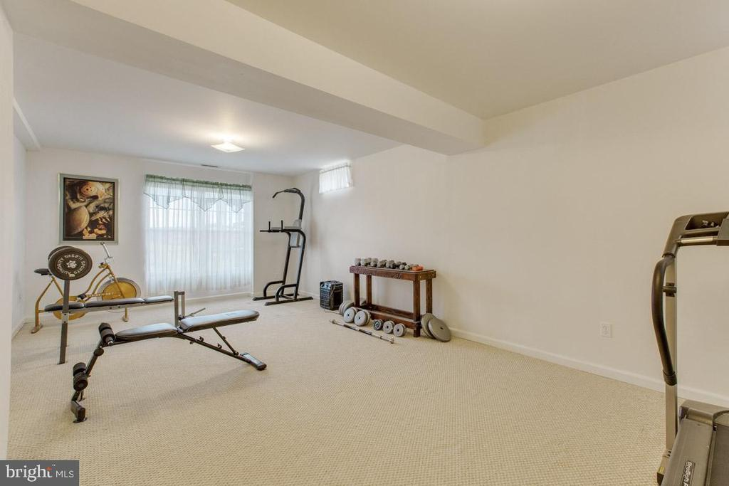 Large exercise room - 41205 CANONGATE DR, LEESBURG