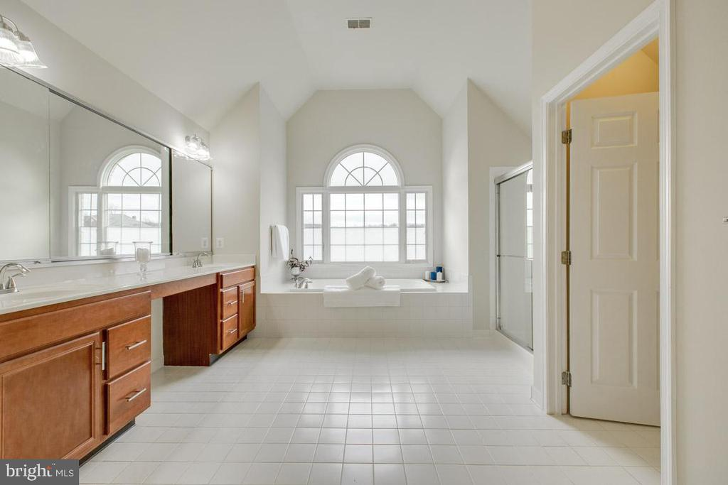 Master walk in bathroom with soaking tub - 41205 CANONGATE DR, LEESBURG