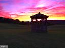 Sunset in your Gazebo overlooking the vineyards - 12138 HARPERS FERRY RD, PURCELLVILLE