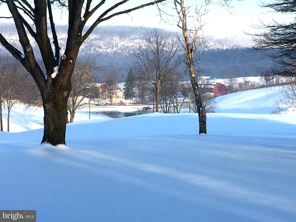 Winter view of the Blue Ridge Mountains - 12138 HARPERS FERRY RD, PURCELLVILLE