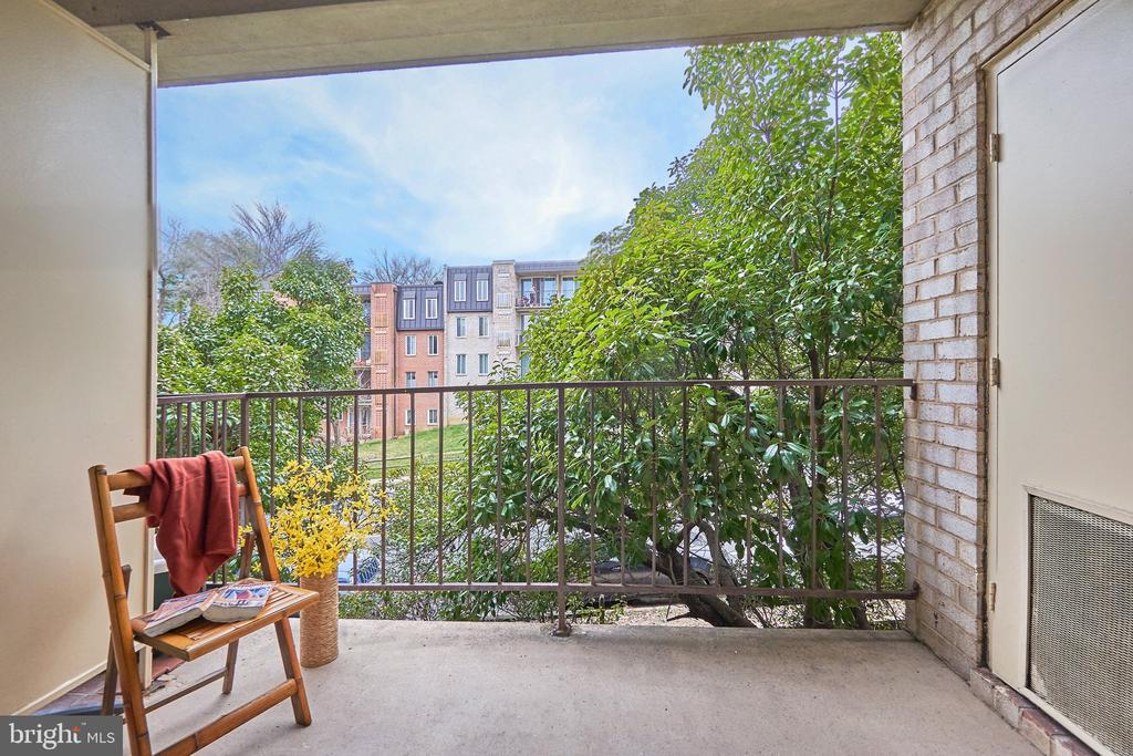 Privacy on the balcony with huge old-growth trees. - 5009 7TH RD S #102, ARLINGTON