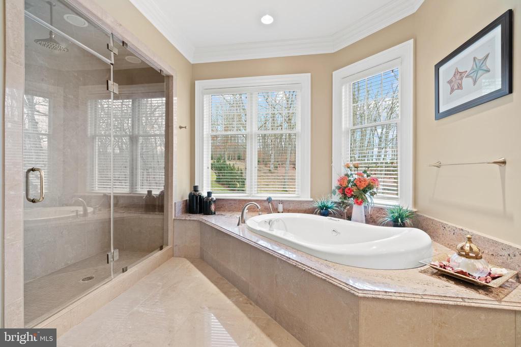 Tranquil Owner's Bathroom - 40543 COURTLAND FARM LN, ALDIE