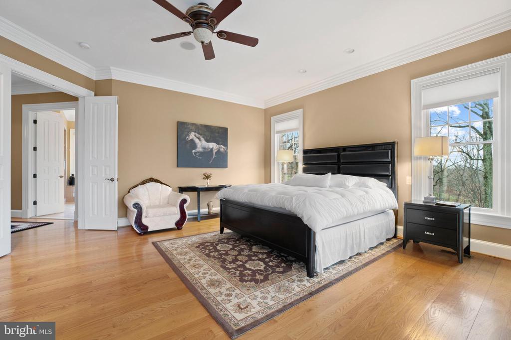 Main Level Owner's Bedroom - 40543 COURTLAND FARM LN, ALDIE